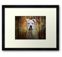 Homey don't play that!!! Framed Print