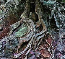 Tree-Drop  by Culrick99