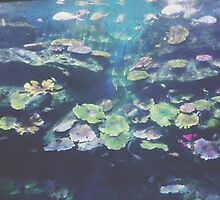 under the sea by ingardens