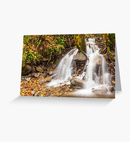Un-named mountain stream in the Beckler River Valley Greeting Card