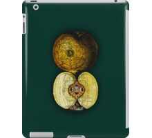 newton's infinite fruit of cosmic indolence iPad Case/Skin