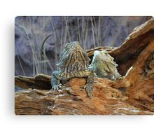 Two curious lizards Canvas Print