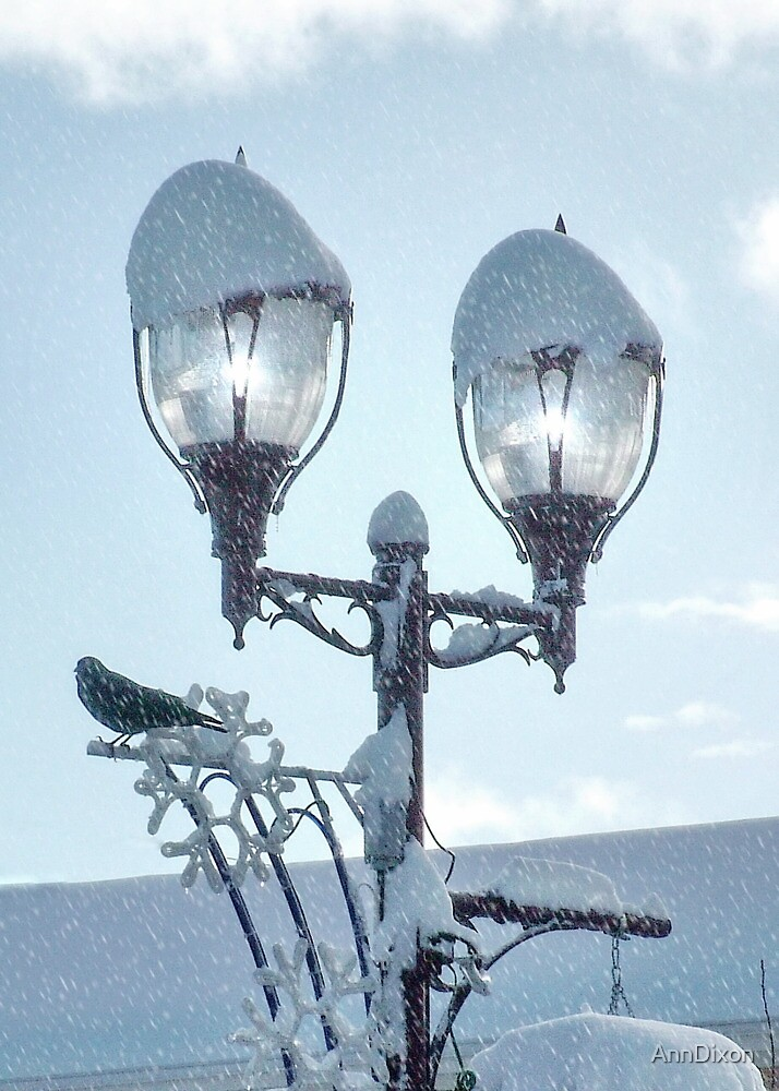 Lights in the Snow by AnnDixon