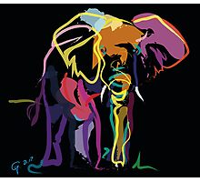 Wild life - Elephant in colour Photographic Print