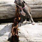 Big Little Girl by Deanna Maxwell