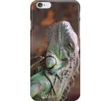 Beautiful peaceful Iguana Lizard sitting on a tree.  iPhone Case/Skin