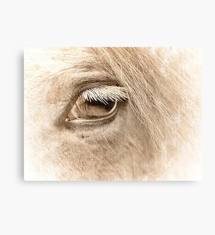 The way to heaven is on horseback. Canvas Print