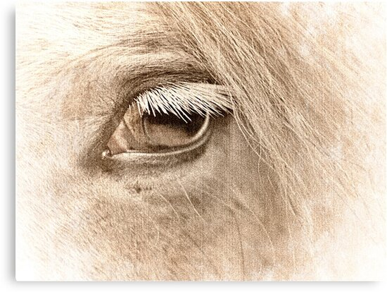 The way to heaven is on horseback. by Lynne Haselden