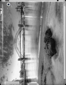 Beach View - Sydney Harbour, Sydney Australia - IPAD Cover by Philip Johnson
