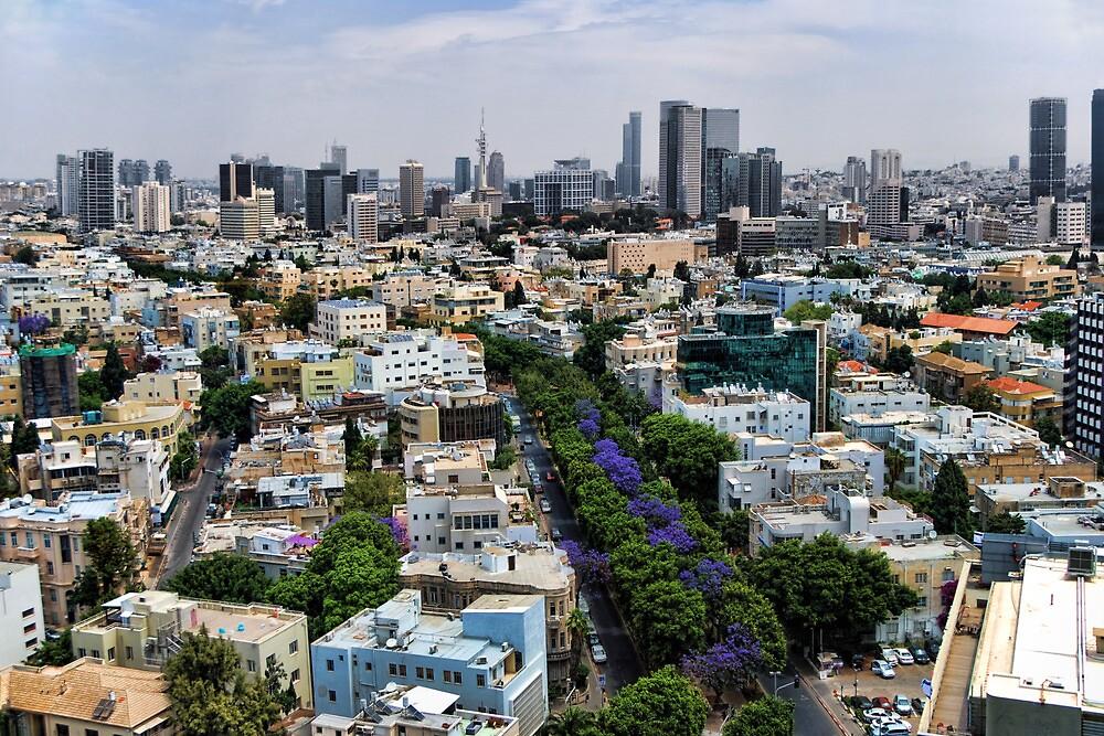 Rothschild boulevard season change by Ronsho