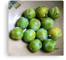 Greengages Displayed In A Ceramic Bowl Canvas Print