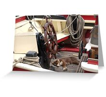 Sleeping dog onboard Classic boat, Brest 2008 Maritime Festival, Brittany, France Greeting Card