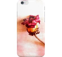 When Summer has passed. iPhone Case/Skin