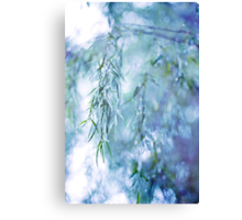 Silver Branches Canvas Print