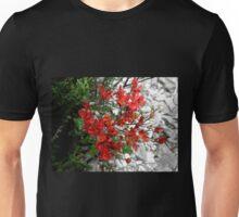 Myrtle Beech, Crater Lake, Cradle Mountain, Tasmania, Australia. Unisex T-Shirt