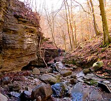 Hiking in the Ozarks by MelMon8