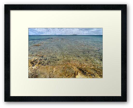 Limestone at Yamacraw Beach in Nassau, The Bahamas by Jeremy Lavender Photography