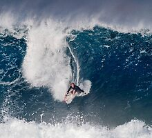The Art Of Surfing In Hawaii 4 by Alex Preiss