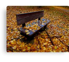 Alone with the leaves Canvas Print