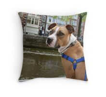 Boat Ride Down the Canal Throw Pillow