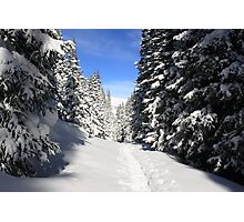 Snowshoe Heaven Photographic Print