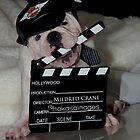 Mildred Crane by Ashleyg