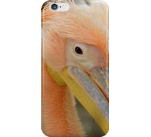 Awesome Pelican Bird iPhone Case/Skin