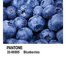 Pantone - Blueberries Photographic Print