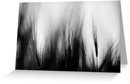 in my dreams II by Victor Bezrukov