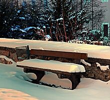 Snow covered bench by Patrick Jobst