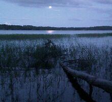 Finnish Summer Night by Lyraspiral
