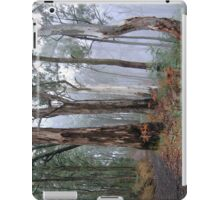 Ghosts In The Mist - Victorian Alps, Australia (IPAD CASE) iPad Case/Skin