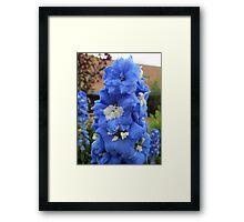 Blue Glory Framed Print