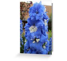 Blue Glory Greeting Card