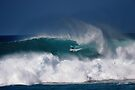 The Art Of Surfing In Hawaii 8 by Alex Preiss