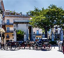 Plaza de Armas in Habana Vieja by Yukondick