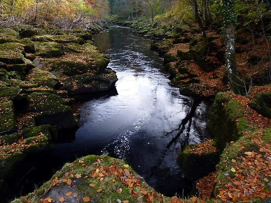 The Strid by Kat Simmons