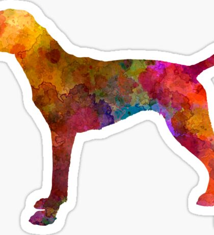 German Shorthaired Pointer in watercolor Sticker