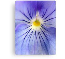 Flower Yolk Canvas Print