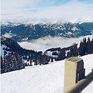 Snow Escape by Eliza Sarobhasa