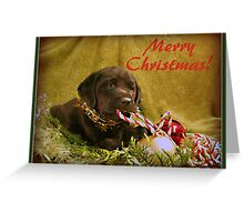 Merry Christmas Lady! Greeting Card