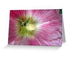 Bee Loving Greeting Card