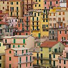 Manarola Houses by Edward Perry