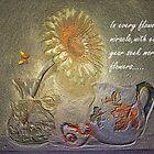 Seek More Flowers by wiscbackroadz
