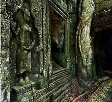 Twisted, Cambodia by Michael Treloar