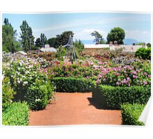 Rose Garden, Woolmers, Tas Poster