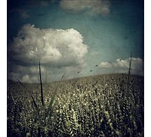 wave - surreal rural landscape Photographic Print