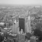 Empire State of Mind by Sarah Ireton