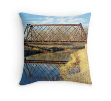 Rusty Reflection Throw Pillow