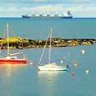 Groomsport Bay by Fara